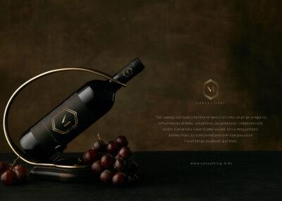 Izrada dizajn_Logotipa_Slavonski_Brod_Consulting-M